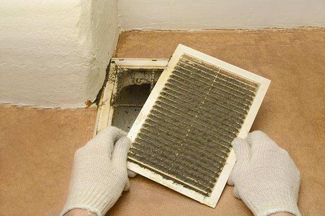 Air duct cleaning service Ontario Duct Cleaning Of Toronto in Markham (ON) | LiveWay